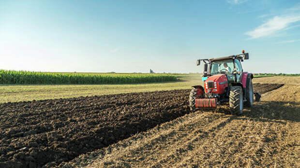 Логистика и сбыт: какие меры поддержат российских фермеров