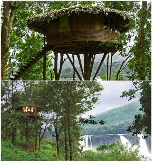 Домик на дереве среди девственного тропического леса возле водопада Атираппилли (Индия).   Фото: rainforest-boutique-resort.kerala-hotels.