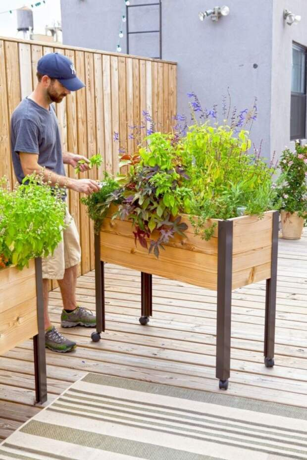 Высокие грядки, в которых удобно выращивать овощи и зелень