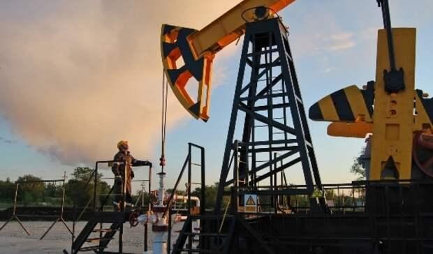 «Роснефть» нашла вСамарской области еще одно месторождение нефти