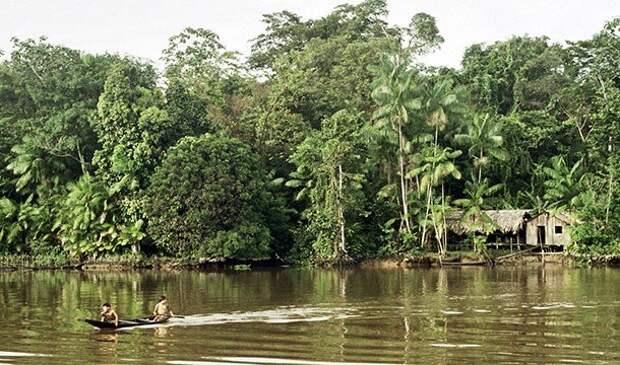 Невероятные факты про Амазонку
