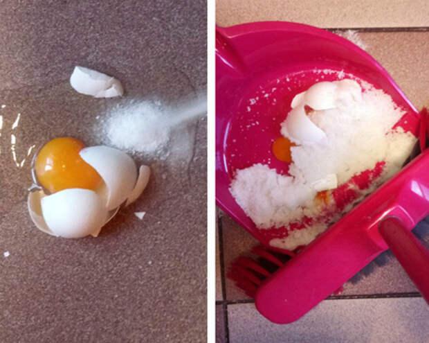 Яйцо на полу.   Фото: Белок.Нет.