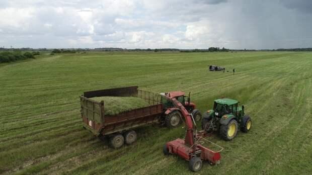Россельхознадзору могут разрешить вести реестр кормовых добавок