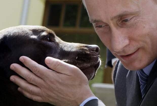 «Американская симпатия» к российскому президенту бьет все рекорды