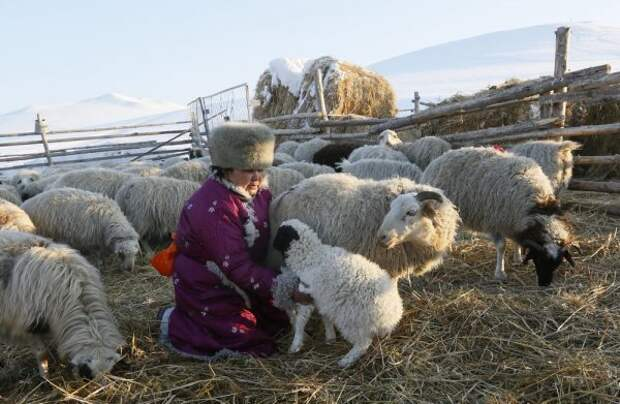 Подборка интересных фотографий из Сибири