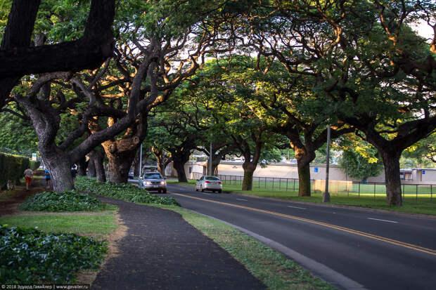 Прогулка по Гонолулу