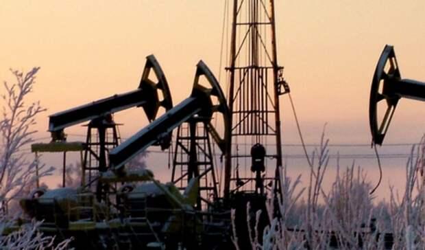 Новак: В2020 году добыча нефти в России может сократиться на10%