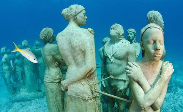 10 чудес из морской бездны, укрытых толщей воды
