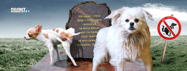 В Одессе прошли учения городских сумасшедших