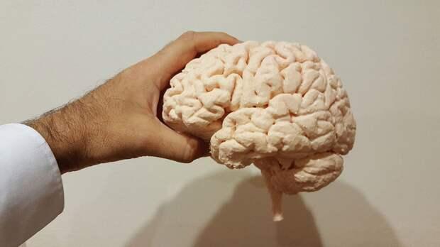 Нейроученые из США нашли необъяснимый феномен в человеческом мозге