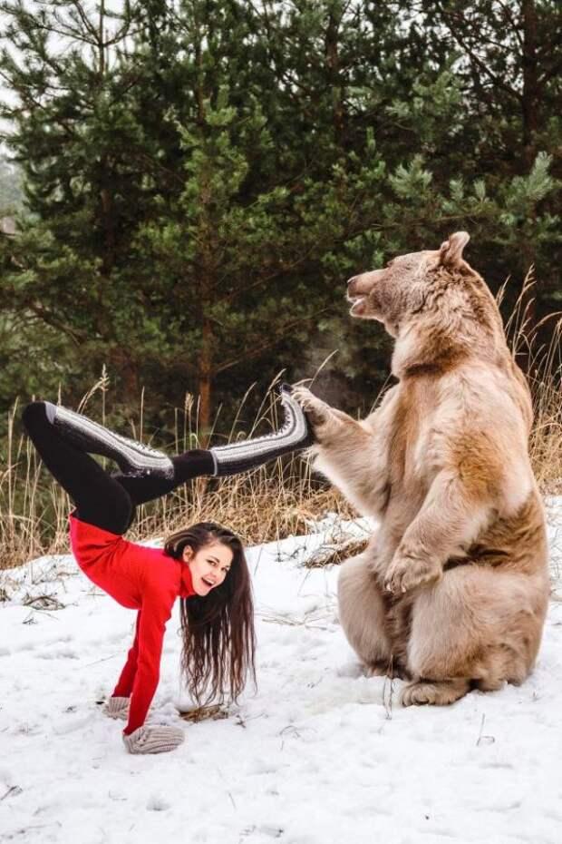 Красивая гимнастка и медведь