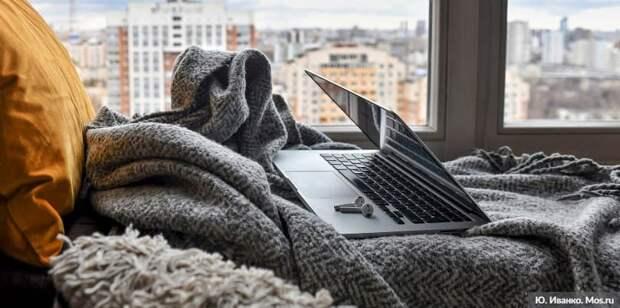 Москвичам рассказали о работе учреждений культуры онлайн в период пандемии. Фото: Ю. Иванко mos.ru