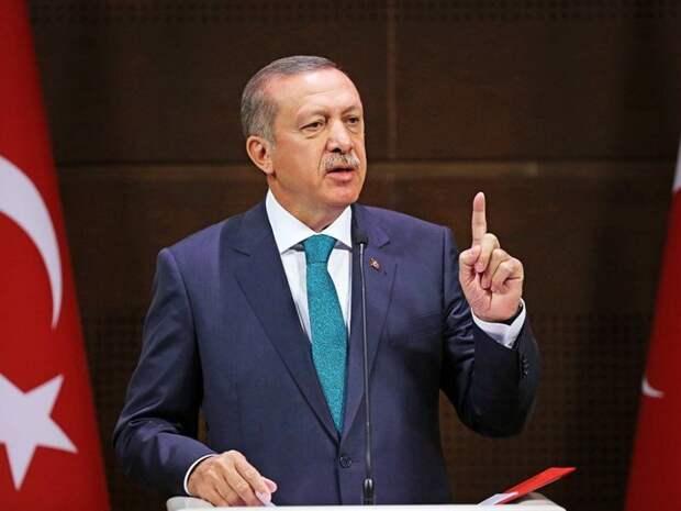 Эрдоган не прав, но Европу не жалко