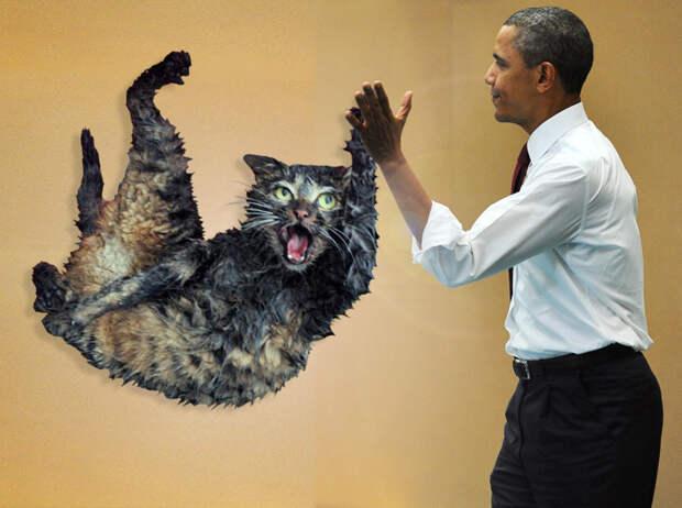 Top Cat. CEN/  Getty