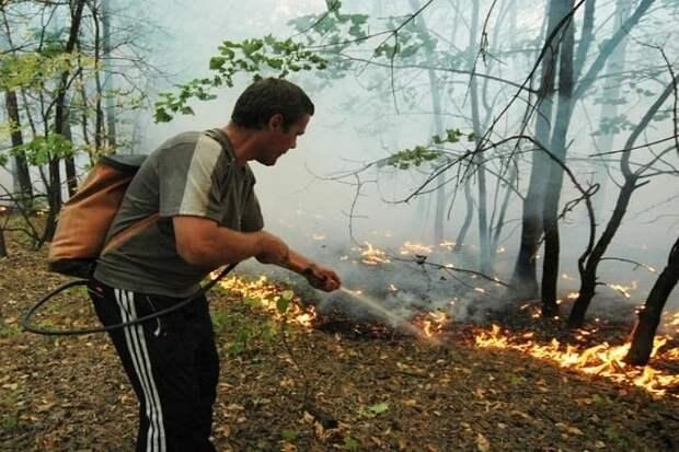 Эксперт по пожарной безопасности дал советы безопасного отдыха в лесу