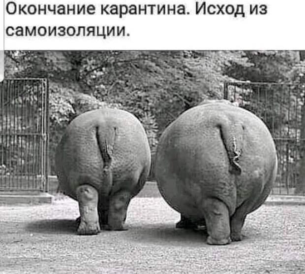 В Одессе установлен памятник неизвестному матросу Рабиновичу...