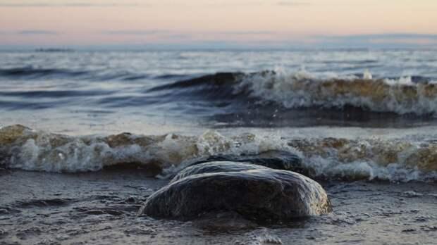 Четыре судна времен ВОВ нашли на дне Финского залива
