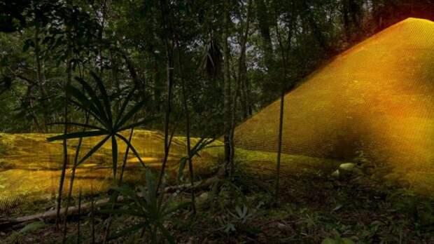 В джунглях Гватемалы найдены неизвестные города, которые переворачивают представления о цивилизации майя