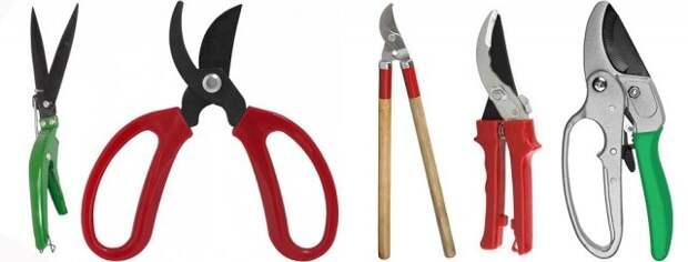 инструменты цветовода
