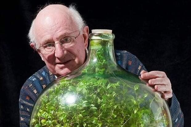 Такое возможно? Мужчина вырастил в бутылке сад, полив его один раз за 50 лет
