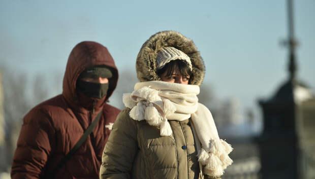 Холодная январская погода установится в Московском регионе в конце недели