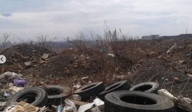 «Хранилище отходов человека» найдено зазнаменитым авторынком Владивостока