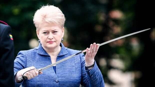 Грибаускайте угрожает России: при вторжении вас ждут серьезные проблемы