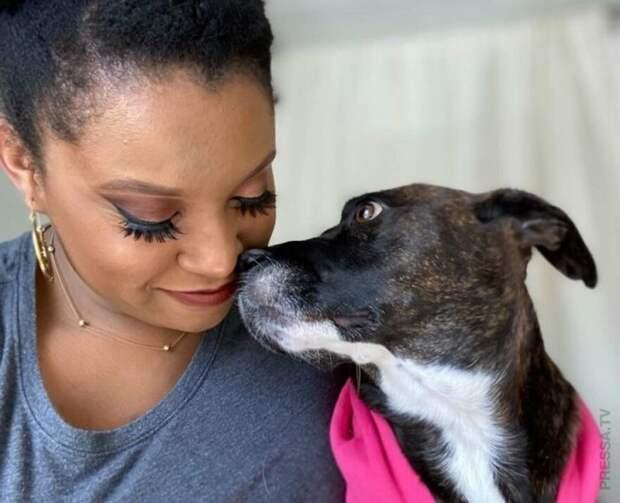 Женщина усыновила собаку, над которой издевались прежние хозяева