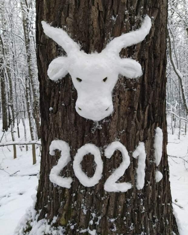 Фото дня: Новый год к нам мчится…