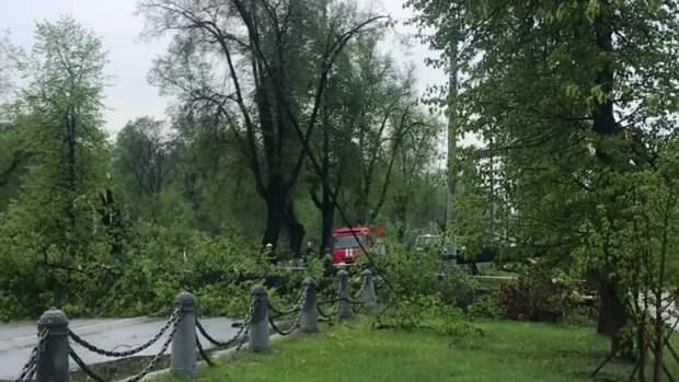 Желтый уровень погодной опасности объявлен в Москве и Подмосковье в воскресенье