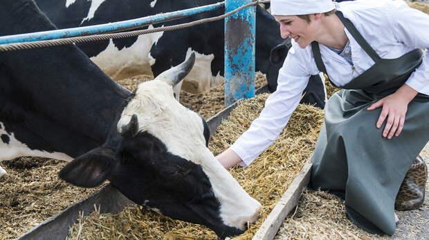 Удмуртия вошла в ТОП-10 регионов России по реализации молока