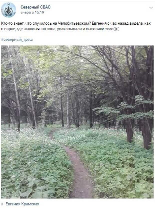 В кустах на Челобитьевском шоссе обнаружили загадочное «тело»