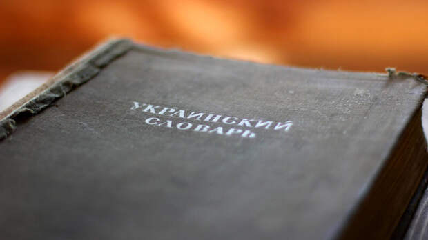 Главный украинизатор бьётся в истерике: дети не говорят на мове!