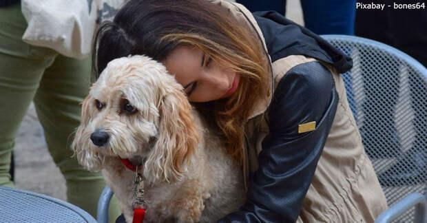 Врачи подтверждают: потерять собаку – это как потерять любимого человека