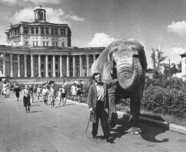 Жизнь Советского Союза в фотографиях. 1950-е — 3