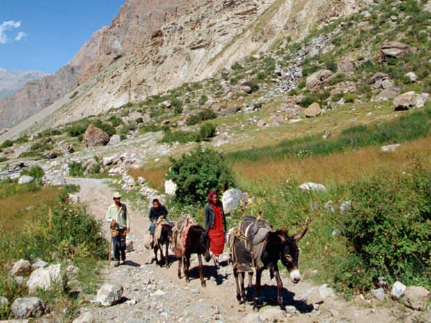По данным Всемирного банка, 47,2% восьмимиллионного населения Таджикистана живет за чертой бедности, а доля ВВП на жителя страны по итогам 2013 года составила $1050 - самый низкий показатель среди пост-советских стран