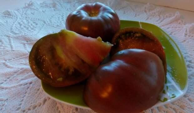 сорт томата зефир в шоколаде