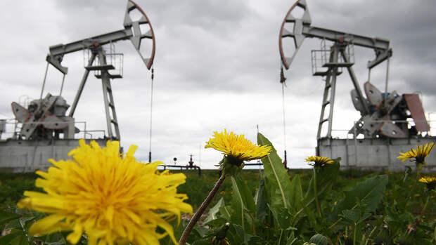 Почему Финляндия снижает закупки нефти Urals