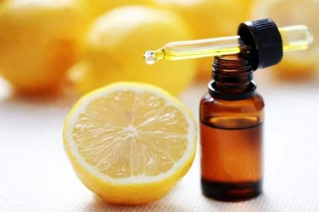 Эфирные масла, которые борются с вирусами и бактериями в доме...