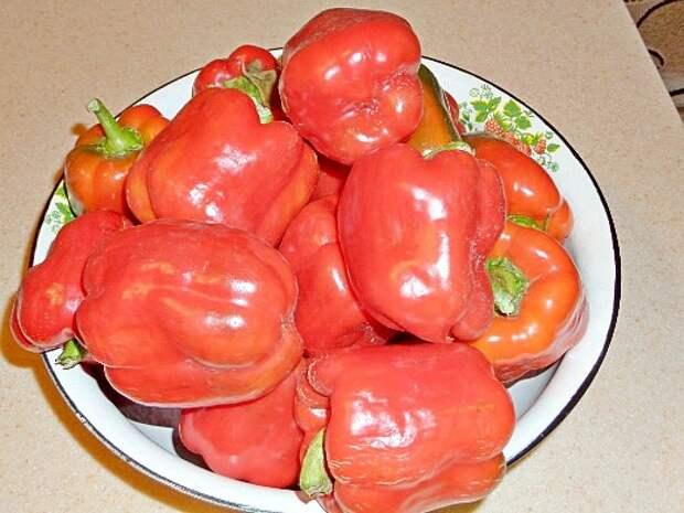 что посадить на огороде список - урожай сладкого перца