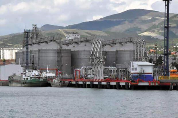 Новороссийский зерновой терминал за вред Черному морю заплатил больше двух миллионов рублей