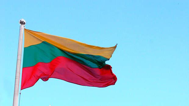 Военнослужащие США разорвали флаг Литвы