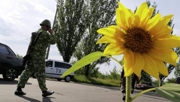 Пресс-служба Порошенко объявила о прекращении огня на Донбассе