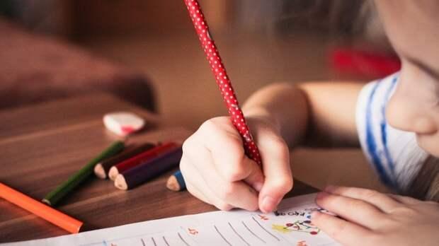 Детский омбудсмен Приморья обвинила в бездействии школьных медиаторов