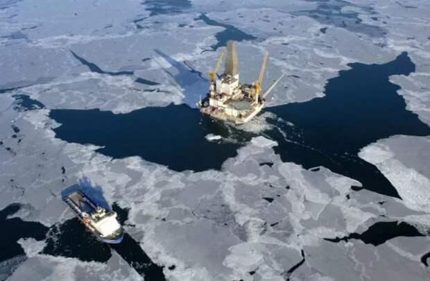 Шельф Арктики