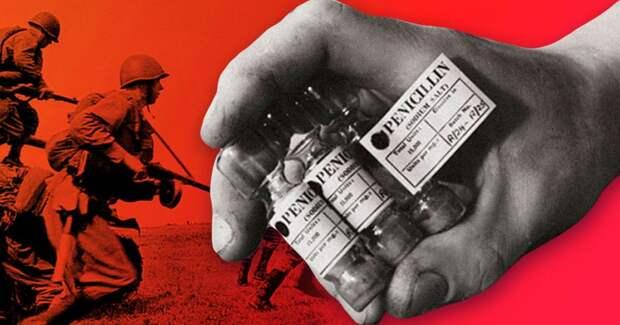 5 фактов, как благодаря ВОВ изобрели советский пенициллин и витамины из хвои