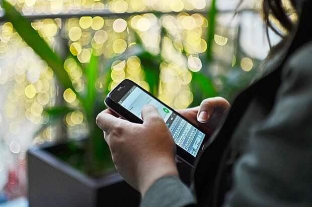 В AppStore и Google Play добавили приложение «Путешествую без COVID-19»