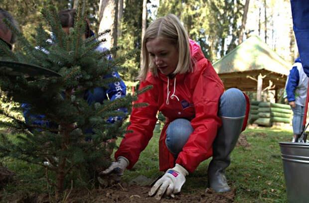 На Кубани высадят деревья в память о погибших в годы войны