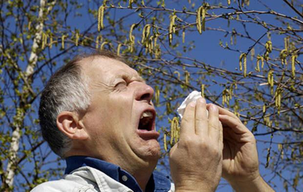Пыльцевой дождь: в Москве начался сезон аллергии