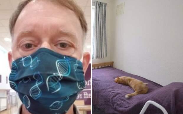 Мужчина узнал о «неверности» кота, увидев, как он спит в доме соседей